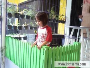 Ada tamannya juga nih lengkap dengan pagar hijau