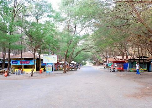 Jalanan Pantai Goa Cemara