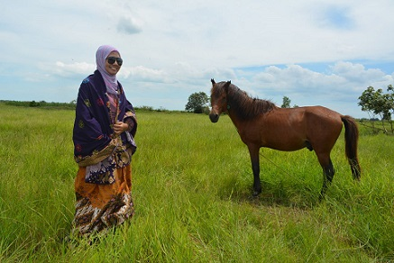 kuda dan savana