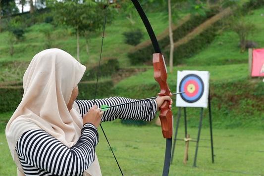 archery d'emmerick