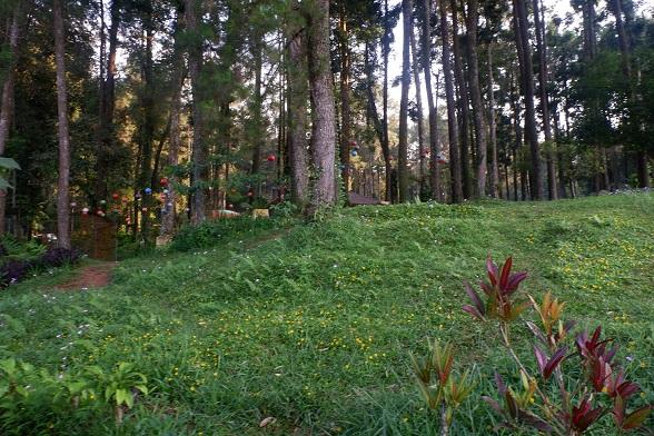 trekking baturraden