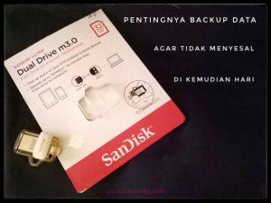 backup data smartphone