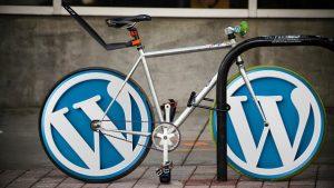 rekomendasi plugin wordpress untuk pemula